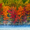 Red_Leaves_Lakeside-MI-UP-Fall_Color_Oct132016_0117