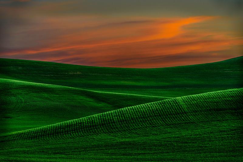 Pullman Sunset