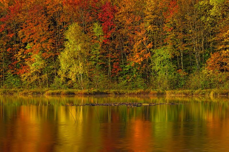 Jewel_Tones-MI-UP-Fall_Color_Oct132016_0255