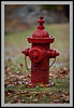 Old Hydrant -5544