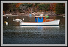 White Boat -5769