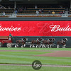 The Budweiser Clydesdales round the outfield prior to the Seattle Mariners versus Minnesota Twins baseball game at Target Field in Minneapolis, MN. The Minnesota Twins won the game 3-2.