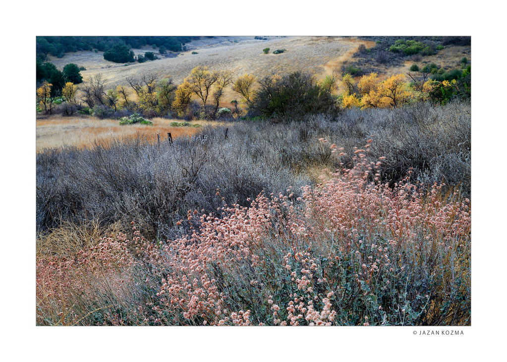 Reagan Ranch In Winter