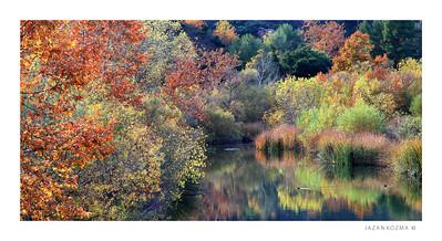 River Palette