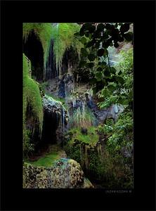Escondido Falls - Detail I