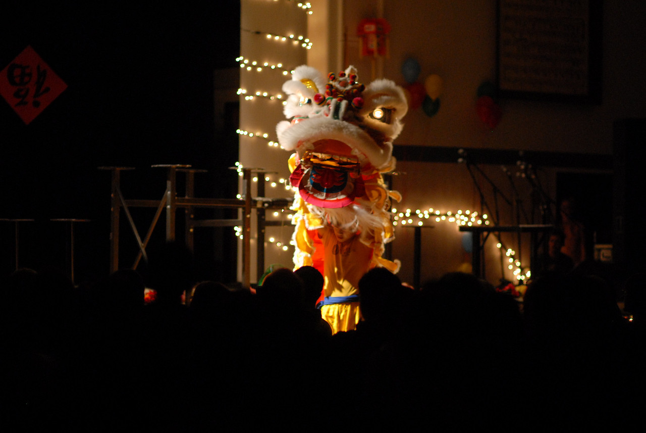 Lion Dance, Chinese New Year 2009