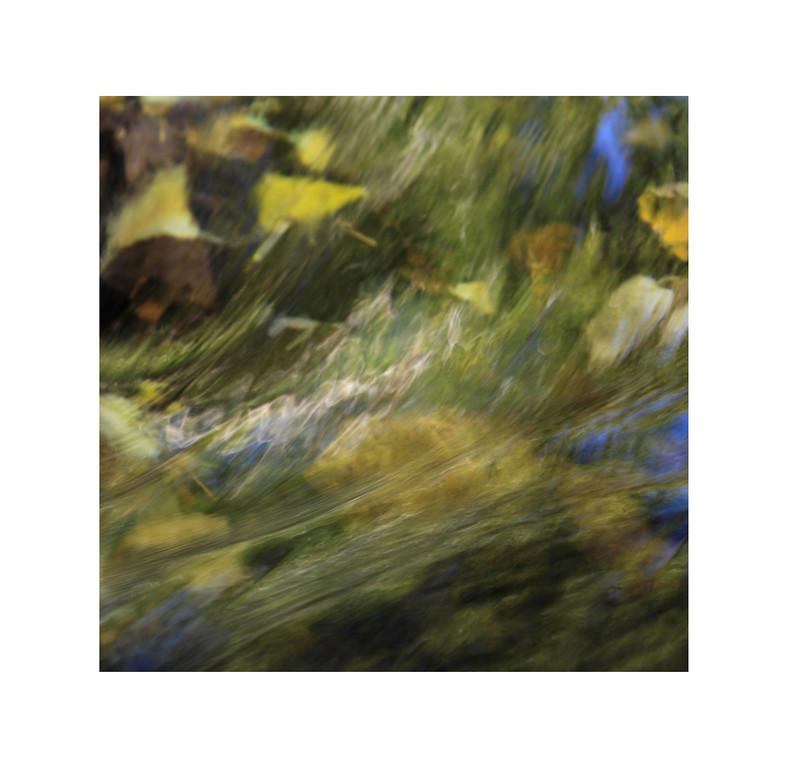 Water Abstract V - Leaves in Stream, McGee Creek, Eastern Sierra.