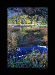 Lundy Canyon beaver pond - Fall 2015 Eastern Sierra