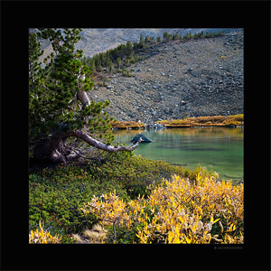 Barney Lake - Fall 2015
