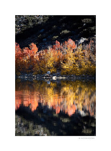 North Lake - Fall 2014, Eastern Sierra