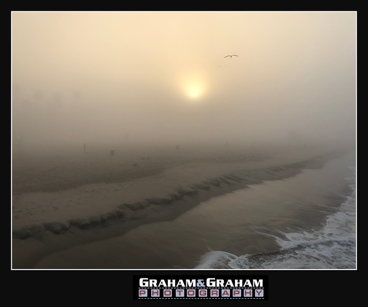 "A foggy morning and the birds don't care. By <a href=""http://www.grahamandgrahamphotography.com"">http://www.grahamandgrahamphotography.com</a>"