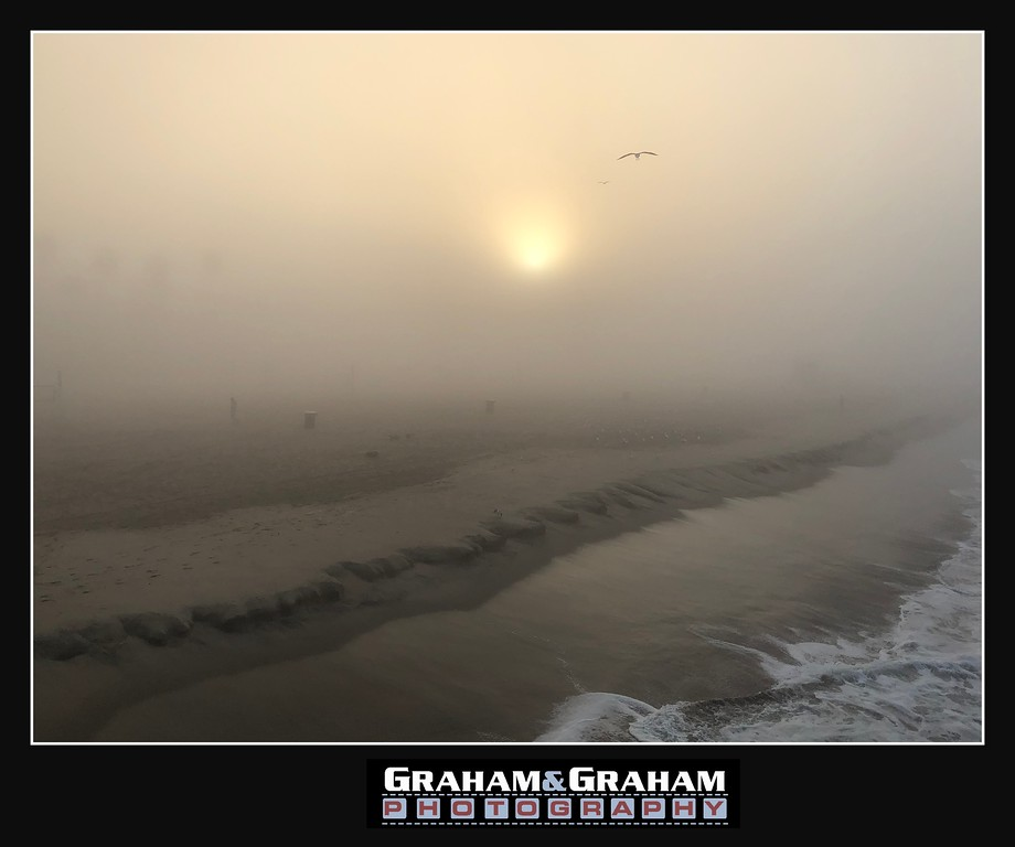 """A foggy morning and the birds don't care. By <a href=""""http://www.grahamandgrahamphotography.com"""">http://www.grahamandgrahamphotography.com</a>"""
