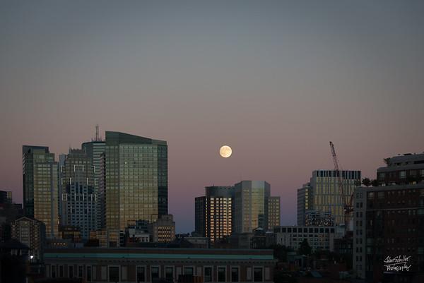 Boston MoonRise