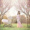 Clarksville Maternity and Baby Photographer