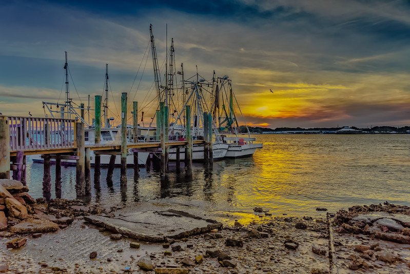 Docked Shrimp Boats at Sunset