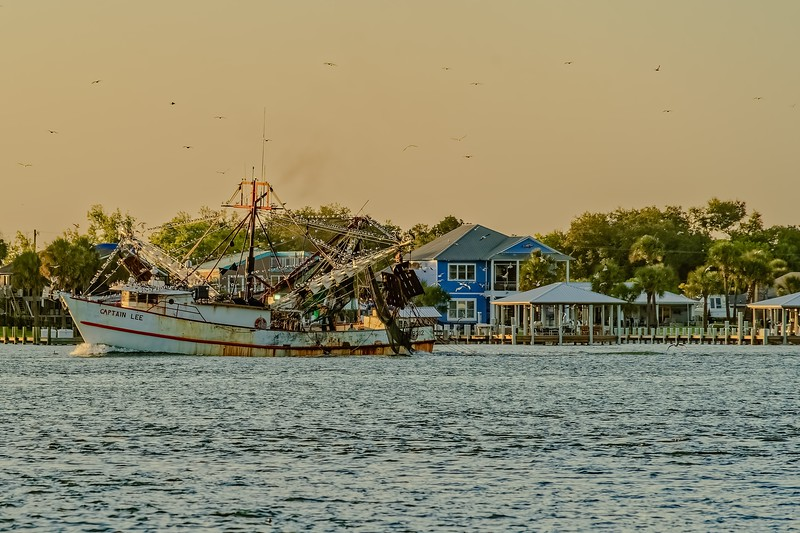 Captain Lee Shrimp Boat Bringing Shrimp In