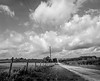 Peer Review:<br /> CR 301 off of FM 531 west of Hallettsville, Texas.  Mamiya RB 67 6x7 camera with 50mm wide angle lens (28 mm focal length 35 mm equivalent), Fuji Acros 100 120 roll film shot at EI 50, 1/8 sec @ f/32, no filter, developed with Xtol 1:2 at 10 mins @ 68 DegsF. The roll of film was purposely over exposed and underdeveloped to give the film more dynamic range.   Digitized with a Nikon D5100 with a 1963 55mm macro lens.  The negative was inverted in Photoshop, and contrast and dodge/burn, and spotting adjustments were made.  Taken July 3, 2017.