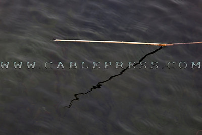 394 cablepress_0030