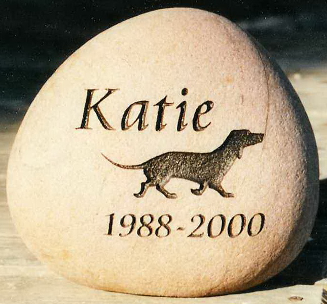 Katie Dog