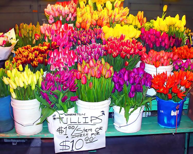 #CM298 Tulips