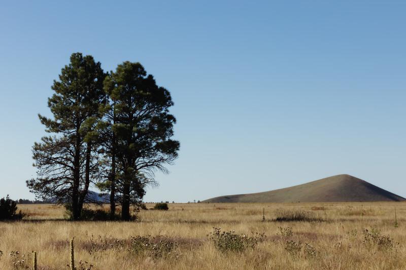 Arizona Prairie