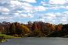 Autumn Sunday at the Park