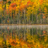Ultimate_Autumn-MI-UP-Dawn-Lake-Reflections_161014_0375