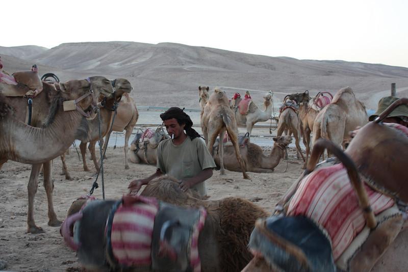 Negev, Kfar Hanokdim, west of Masada (July 2009) © Copyrights Michel Botman Photography