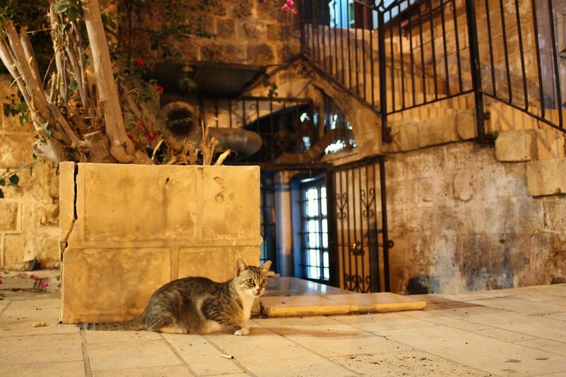Jaffa (July 2009) © Copyrights Michel Botman Photography
