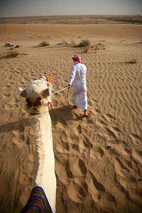 Camel ride, Bab Al Shams Desert Resort, Dubai