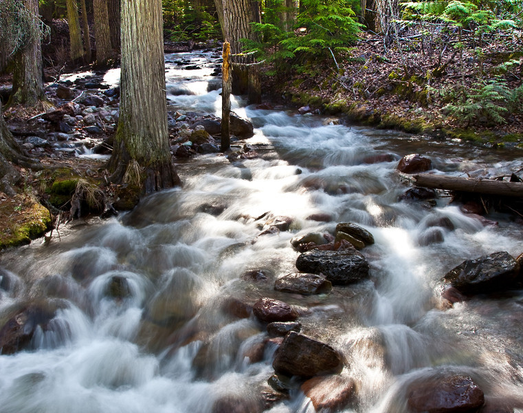 stream running through Glacier Park, MT