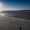 honeymoon island-3405