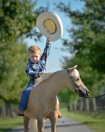 cruze & horses dht-68