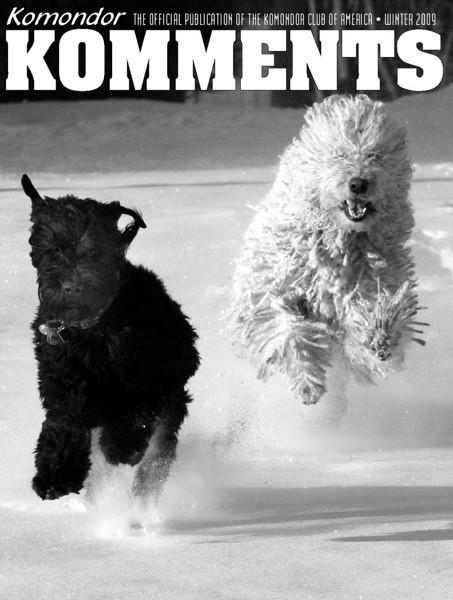<i>Kommondor Komments</i> <br> Winter 2009