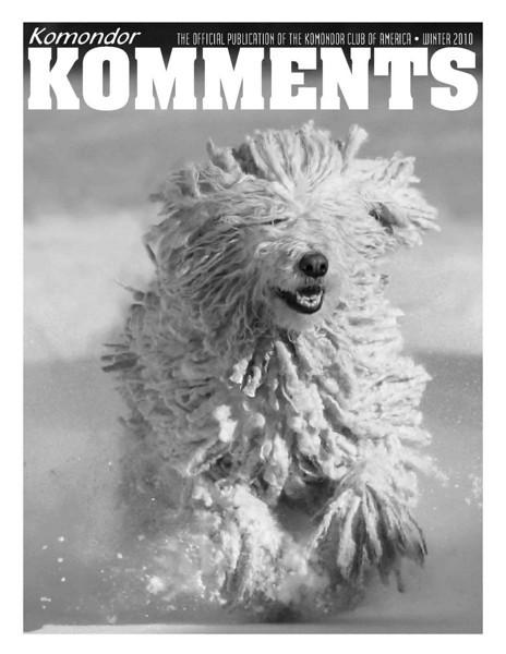 <i>Kommondor Komments</i> <br> Winter 2010