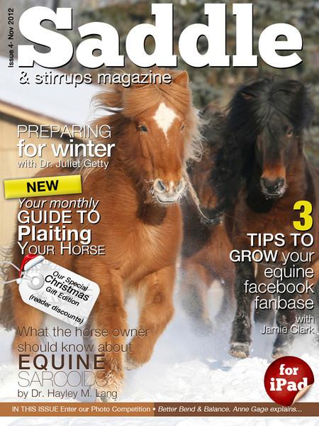 <i>Saddle and Stirrups</i> <br> November 2012