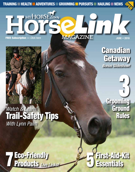 <i>HorselLink</i> <br> June 2010