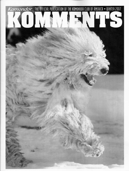 <i>Kommondor Komments</i> <br> Winter 2007