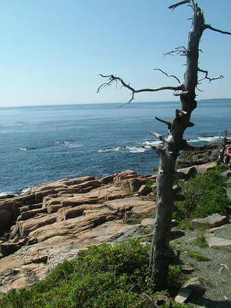 Acadia National Park. Bar Harbor, Maine