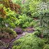 Garvan Gardens