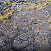 Ancient Art, Volcanos National Park - Hawaii<br /> <br /> The petroglyphs at Puu Loa were created centuries ago -  abstract designs, human figures, and thousands of carved round pockets (or cupules) that were used as receptacles for umbilical cords. Placing a baby's umbilical cord inside a cupule and covering it with stones was meant to bestow health and longevity to the child.