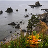 Ecola State Park - Oregon<br /> <br /> A tranquil, seamless horizon along the Oregon coastline - something that is seen more often than the time-limited tourist would like.