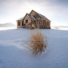 Little House on the Prairie, Swan Valley - Idaho<br /> <br /> A  desolate empty home stands alone along the wintery plains of Swan Valley, along the fertile eastern edge of Idaho. I know nothing of this house, and its many families, but my imagination fills its walls with many tales.
