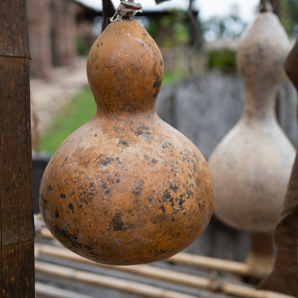 Gourds hanging on the drying rack, Mission San Juan Capistrano