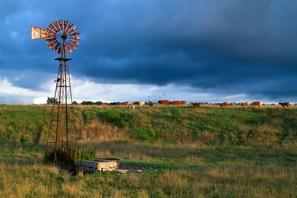 Rustic Farm Scape