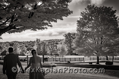 Wedding at the Springton Manor Farm, Glenmore, PA, By Alex Kaplan Photo Video