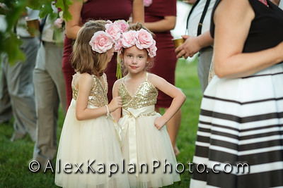 Wedding at the Tomarchio Farm, Mantua NJ By Alex Kaplan