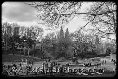 Central Park, New York City, By Alex Kaplan www.AlexKaplanPhoto..comCentral Park, New York City, By Alex Kaplan www.AlexKaplanPhoto..com