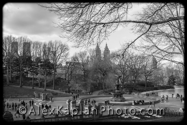 Central Park, New York City, By Alex Kaplan www.AlexKaplanPhoto..comCentral Park, New York City, By Alex Kaplan www.AlexKaplanPhoto..com