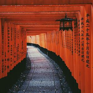 Fushimi Inari in Kyoto Japan